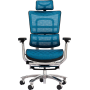 Офисное кресло GT Racer X-809L Blue